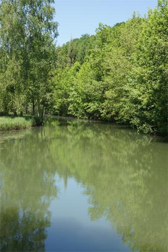 Schöne Angelreisen nach France, LORRAINE, WAVILLE - Chalet au bord d'une rivière