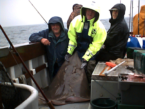 Fishing Photo Album & Gallery - La peche en haute mer (boat-angling) dans le sud-ouest du Kerry, Irlande